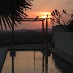 Palm House Costa Rica